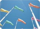 windaanbod windenergie